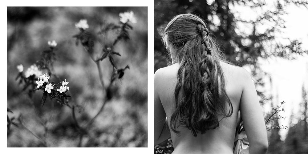 petites douceurs, Baie-Saint-Paul - photographies numériques, 2015